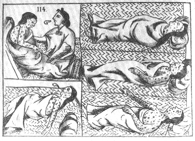 Although undated, this picute seems to be a drawing of what measles was like in Colonial America by a native.
